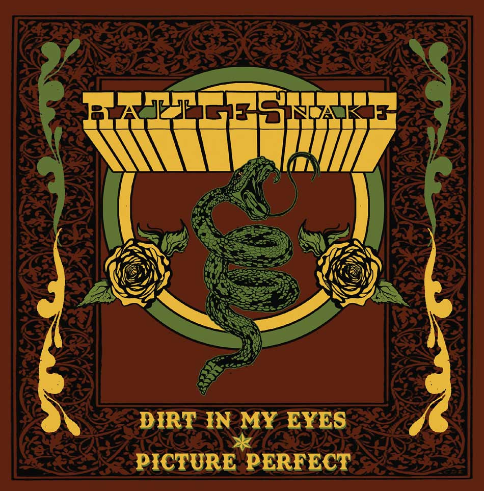 DIRT IN MY EYES/PICTURE PERFECT